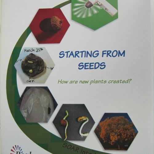 Real Curriculum Book